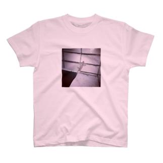 Gecko Tokyo  T-shirts