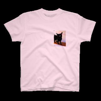 leoleoleの黒猫は不吉じゃない T-shirts