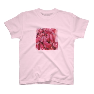 ホタルイカだよ T-shirts