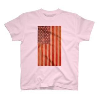 """Bug Series """" USA!USA! """" T-shirts"""