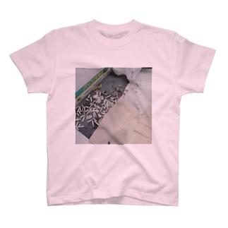 汚いベランダ(ry T-shirts
