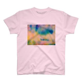 Indoor landscape T-shirts