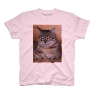 nyan2(ニャンタ) T-shirts
