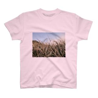 marcher sur la plage T-shirts