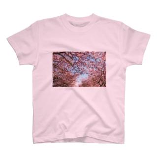 桜に恋して T-shirts