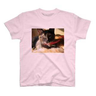 眠たい じじ T-shirts