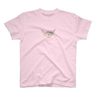 Heavenarium angel T-shirts
