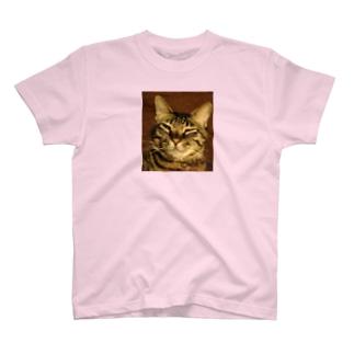 幸せを運ぶトラ猫 T-shirts