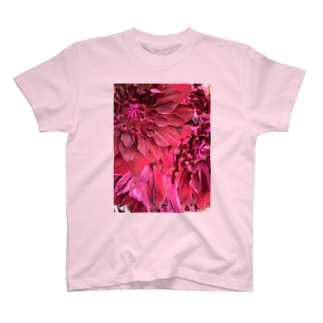 Blooming T-shirts