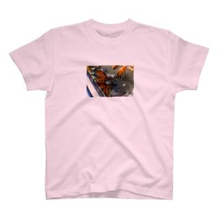 宮島の鹿 T-shirts