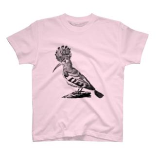 ヤツガシラ <アンティーク・プリント> T-shirts