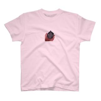 カロン T-shirts