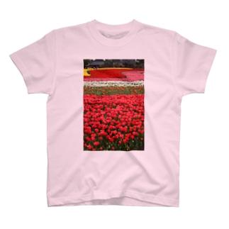 お花畑 T-shirts