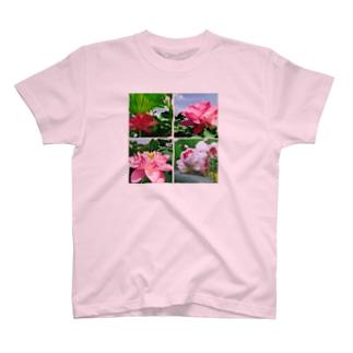 蓮4連発 T-shirts