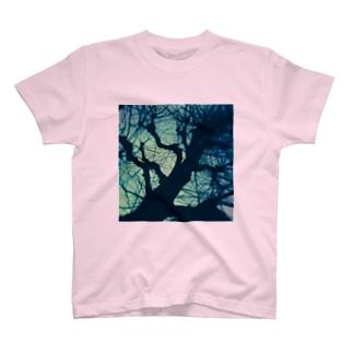樹木の器 T-shirts