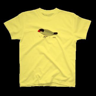 文鳥堂の雑穀を食べる文鳥Tシャツ