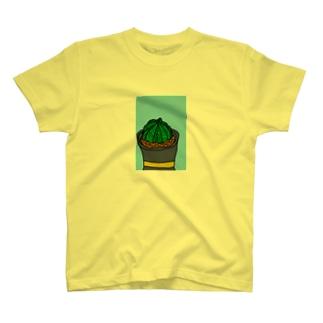 Euphorbia T-shirts