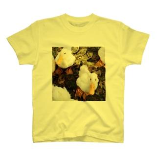 アヒルがやってきた T-shirts