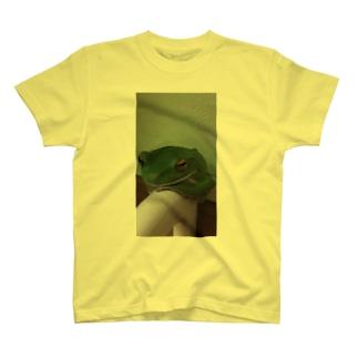 モリアオガエルくん T-shirts