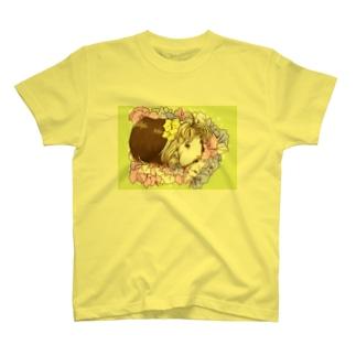 2019 January T-shirts