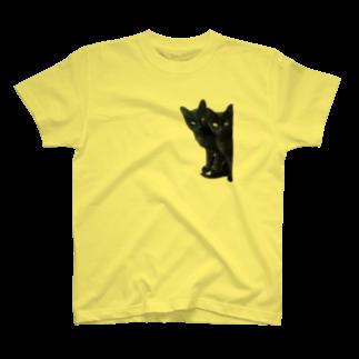 ちばっちょ【ち畳工房&猫ねこパラダイス】の黒猫は見た T-shirts