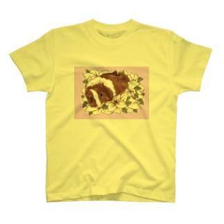 2019 May T-shirts