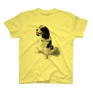 キャバリア№10 トライカラー マイキー T-shirts
