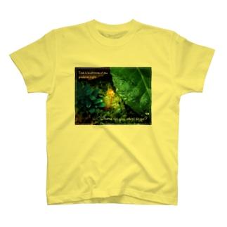 夜の道案内キノコくん T-shirts