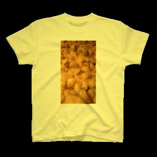 kokoperiの『ひよこ2』 T-shirts