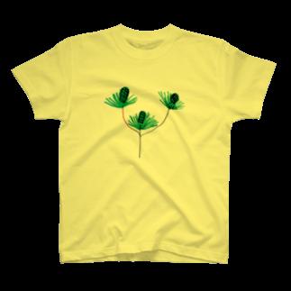 さとやま図案の松 T-shirts