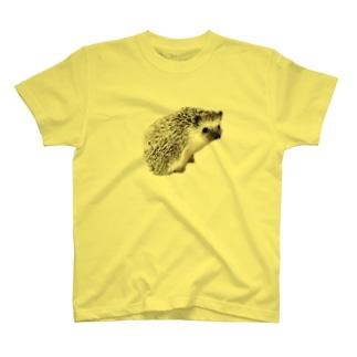 ゆこっとハリボー T-shirts