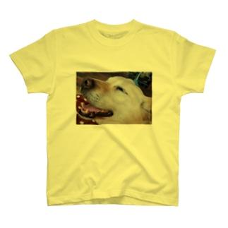 Smiley Dog T-shirts