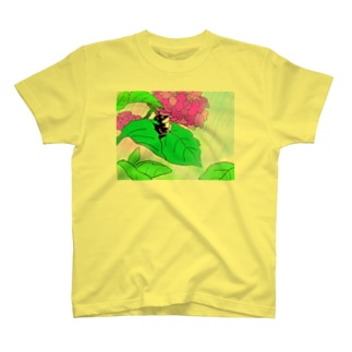 ノラ猫クゥちゃん T-shirts