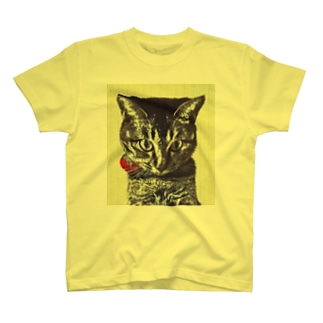 Gnarly Secret T-shirts