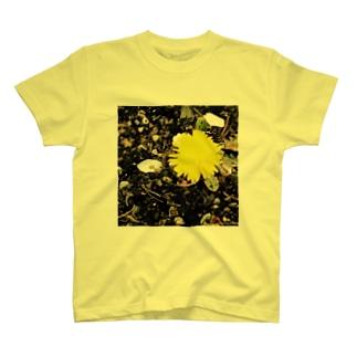 桜の木の下のたんぽぽ2016 T-shirts