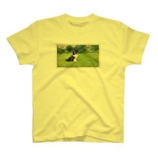 I'm Baffi. T-shirts