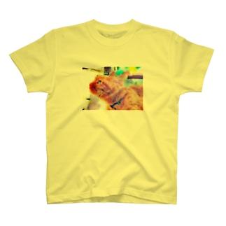 黄昏のなつめ T-shirts