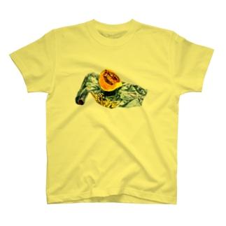 かぼちゃとアルミホイル(枠なしver) T-Shirt