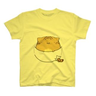 ポケットinちぃねこ T-shirts