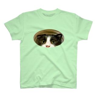 はちわれの穴 T-shirts
