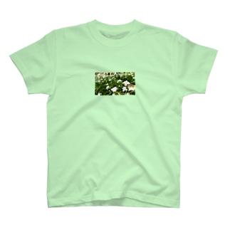 やまとねこのシャガの花畑 T-shirts