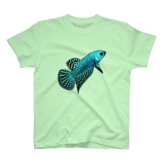 ベタ(コバルトブルーシンフォニー) T-shirts