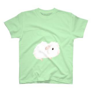 アビシニアンモルモット T-Shirt