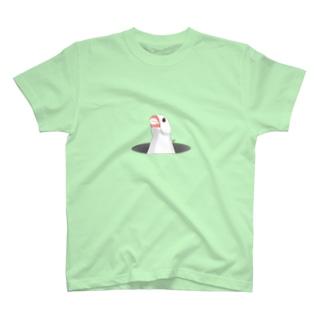 calcalのひょっこり白文鳥 T-shirts
