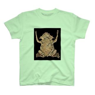 スパイスビジュアル T-shirts