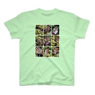 【にこらび】北海道サロベツ原野のエゾシマリス T-shirts