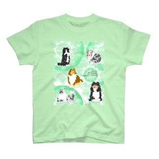 Five colors of Shetland Sheepdogs.~Mint green~ T-shirts