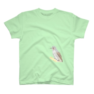 ひよひよヒヨドリ♂ T-shirts
