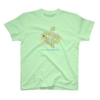 まんぼう T-shirts