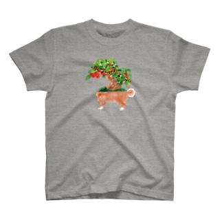イヌモドキ Tシャツ